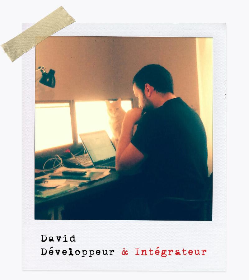 Les Affranchis - David, Développeur & Intégrateur